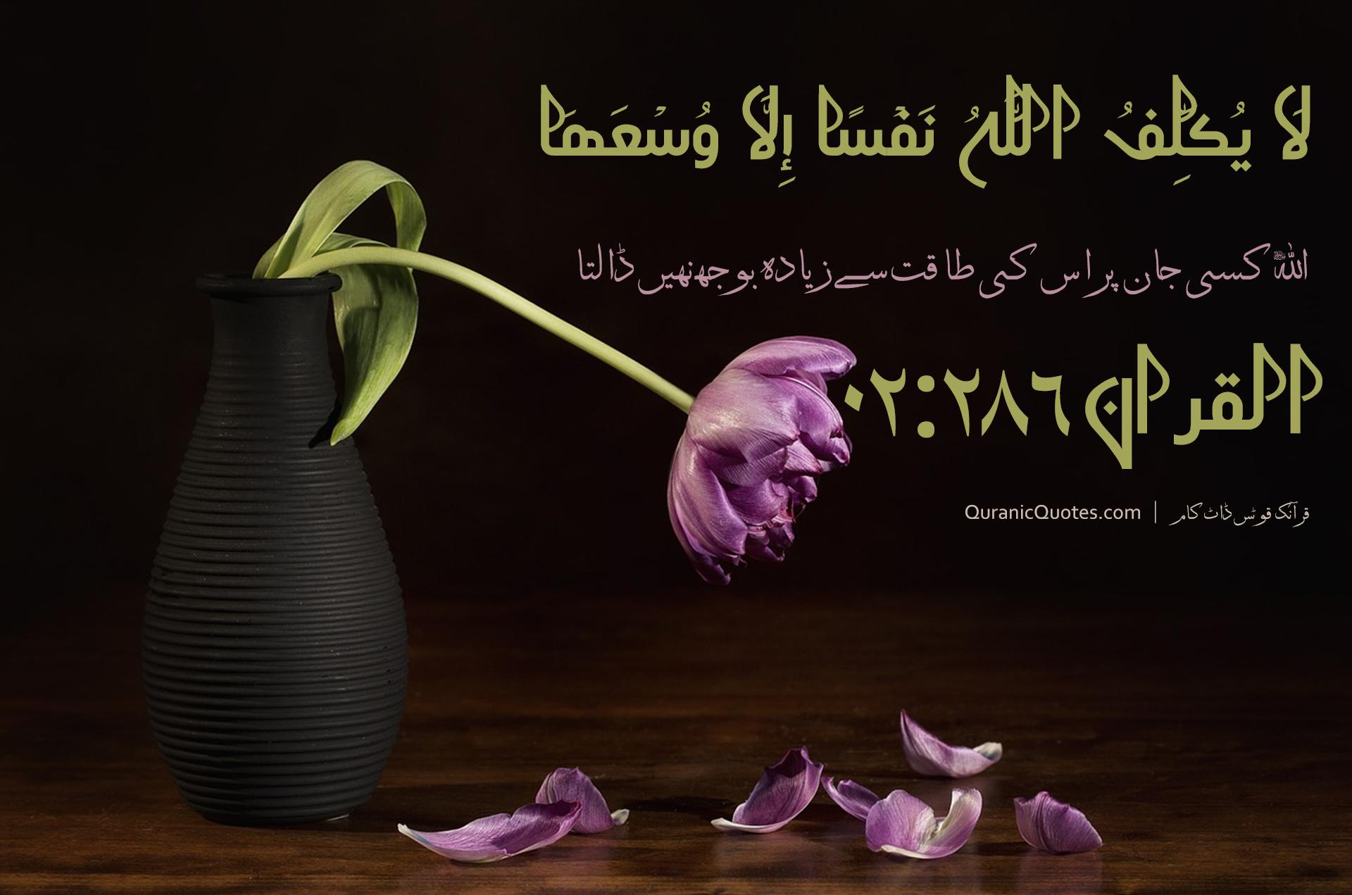 Quranic Quotes Urdu #104