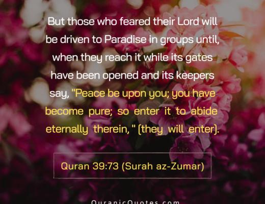 #495 The Quran 39:27 (Surah az-Zumar)